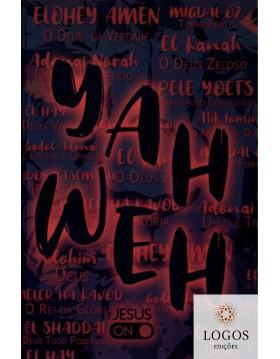 Bíblia Sagrada - NAA -...