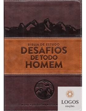 Bíblia de Estudo Desafios...